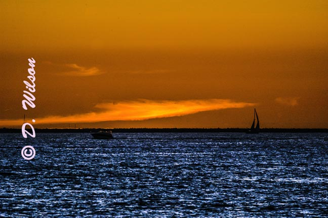 Sailing Away, Long Beach, Ca