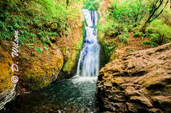 Wahkeena Falls 2, Or