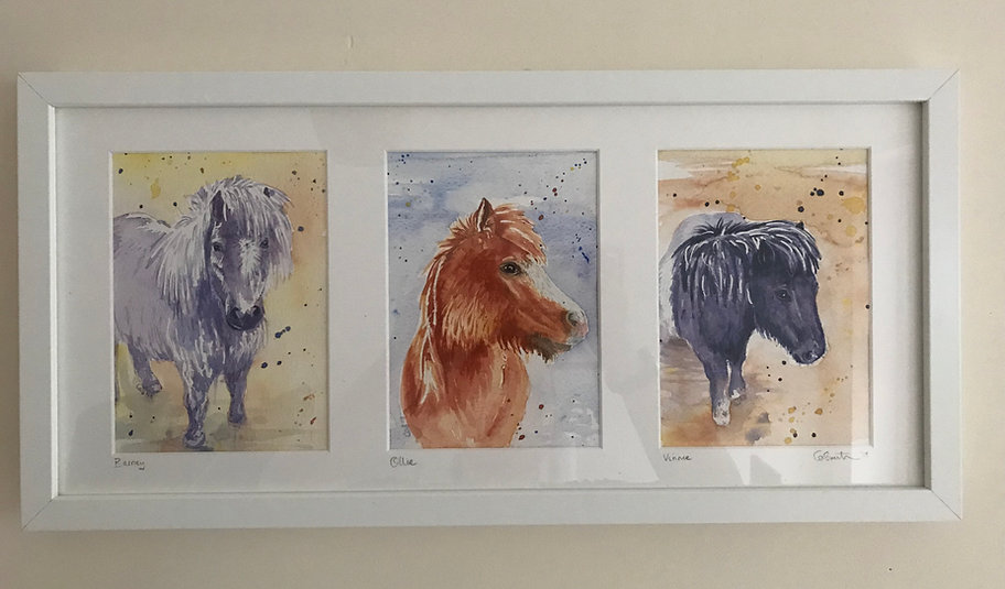 Fulton Ponies.jpg