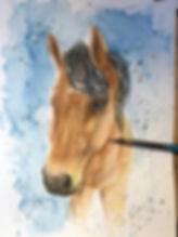 Frank Horse18 Photo.jpg