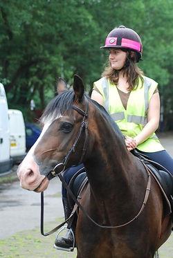 Fly Horse 18.jpg