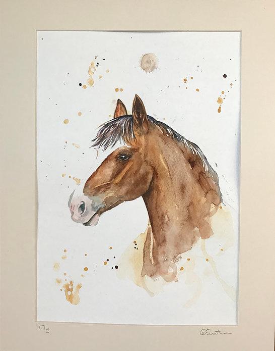 Fly horse.jpg