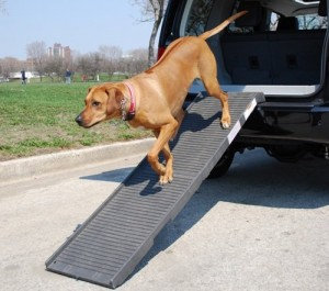 Dog Steps and Ramps
