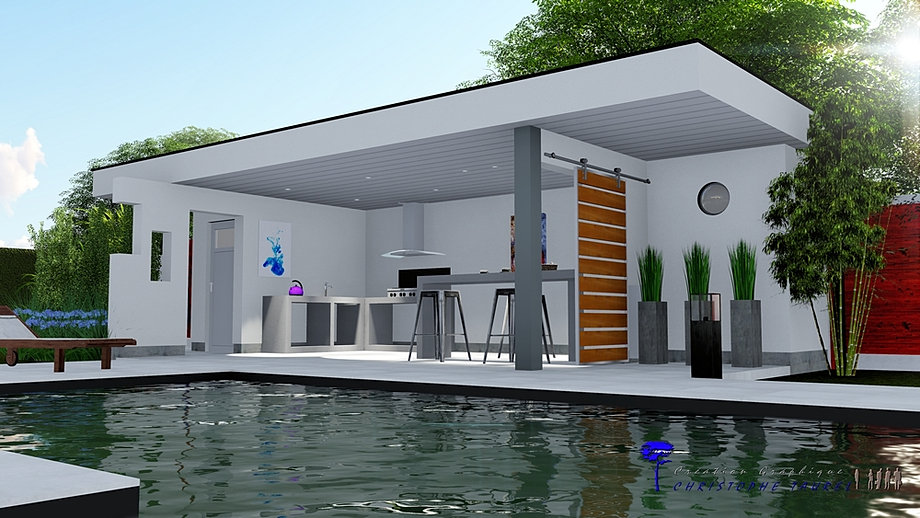 Pool house cuisine d 39 t sur mesure plan de maison 3d for Local piscine toit plat