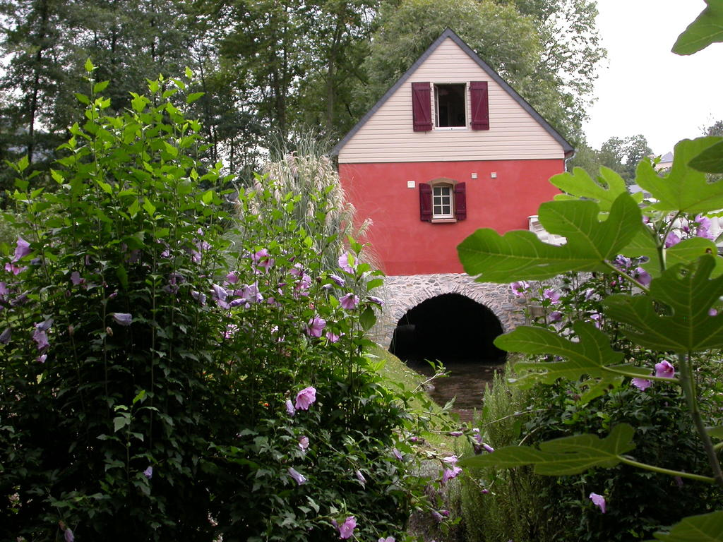 vends moulin à eau France