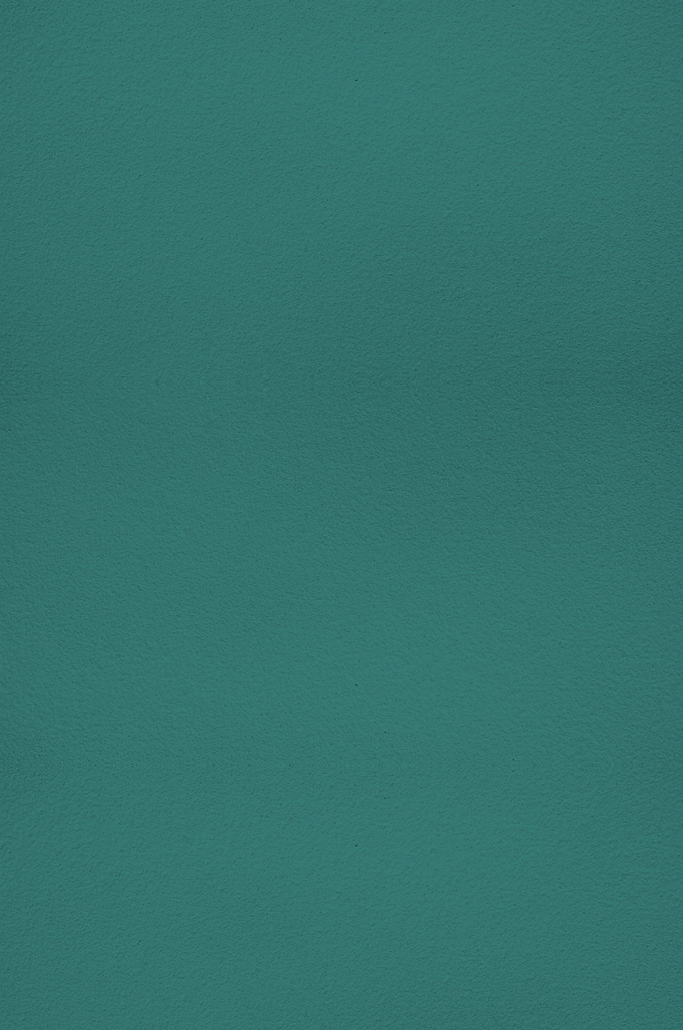 fond vert.jpg
