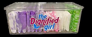 Dignity Box.png