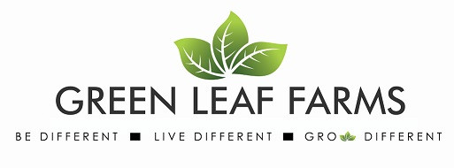 New GLF Logo White - cropped.jpg