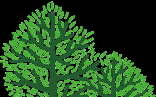 左樹.png