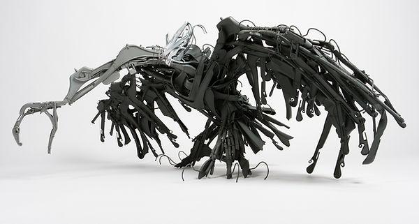vautour%201%20site.jpg