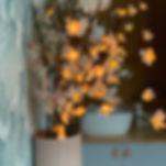 cabinet reflexologie aromathérapie ventouse kobido montesson yvelines