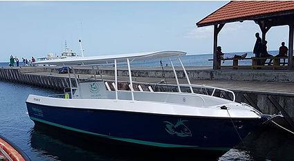 Le bateau Amphitrite fait sur mesure, ombragé, sécuritaire ethomologué en 3ème catégorie