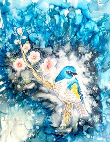 Bluebird on Branch - 022021.jpg