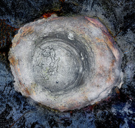 Cosmic Whirlpool
