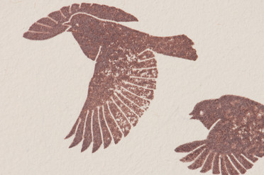 A flock in flight - detail