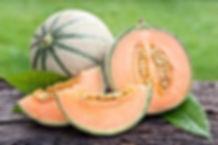image jardinot.org.jpg