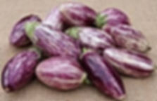 Image d'aubergine.jpg