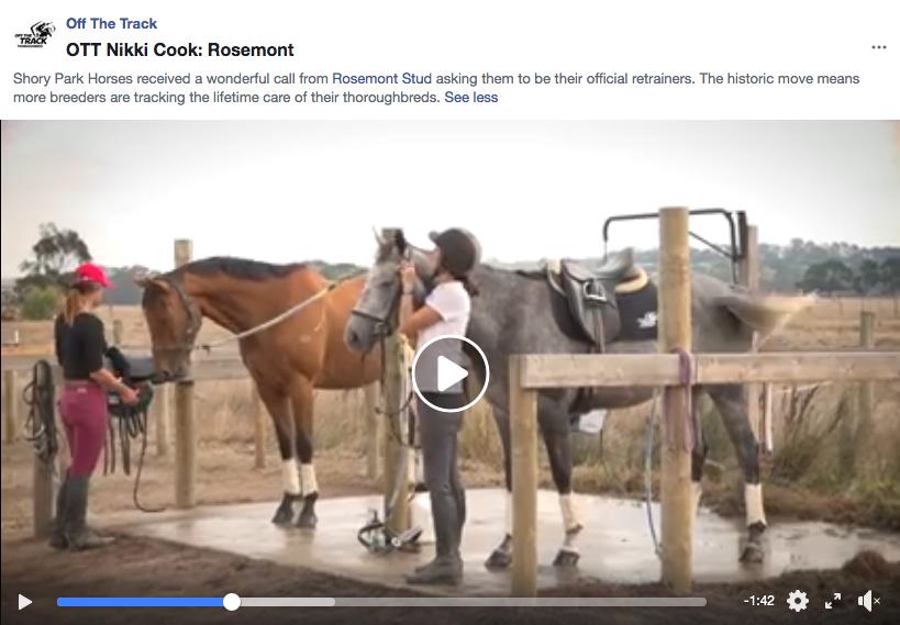 OTT Nikki Cook: Rosemont