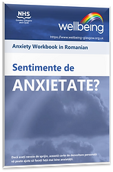 Anxiety Romanian.png
