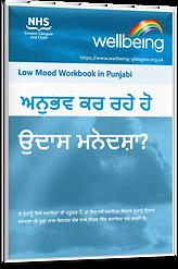 Low Mood Punjabi.png