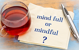 Information Mindfulness Logo.png
