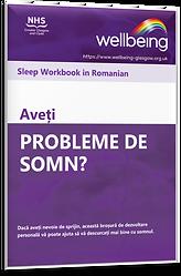 Sleep Romanian.png