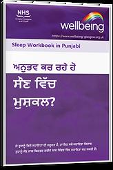 Punjabi Sleep.png