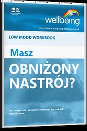 Low Mood Polish Workbook.png