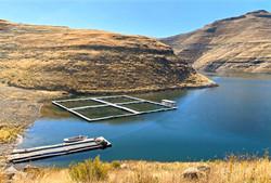 akva aquaculture cages