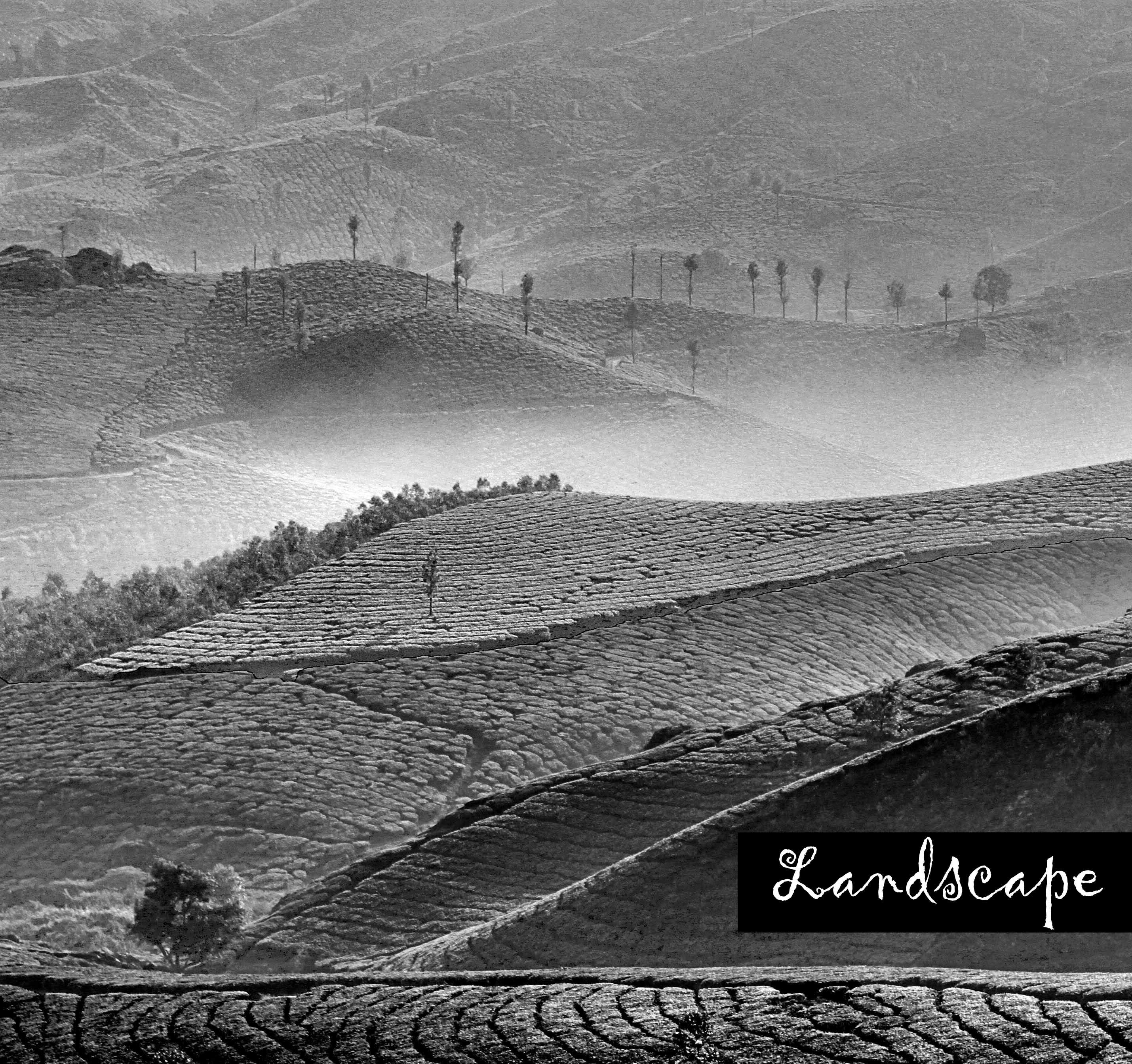 Landscapes - Aloke Lal & Maanas Lal