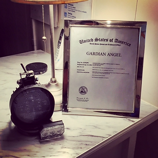 Andrew V. Gardner's marketing plan implemented by Gardian Angel