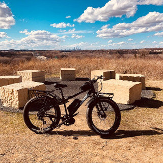 Rambo Bike Pilot Knob Overlook.jpg