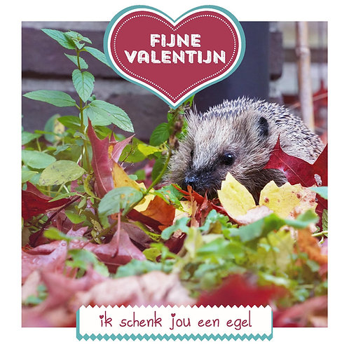 Valentijnskaart #2