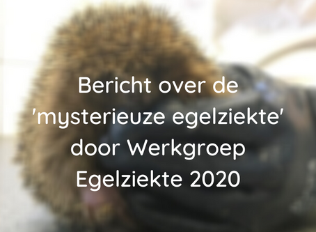 Werkgroep Egelziekte 2020: stand van zaken augustus 2020