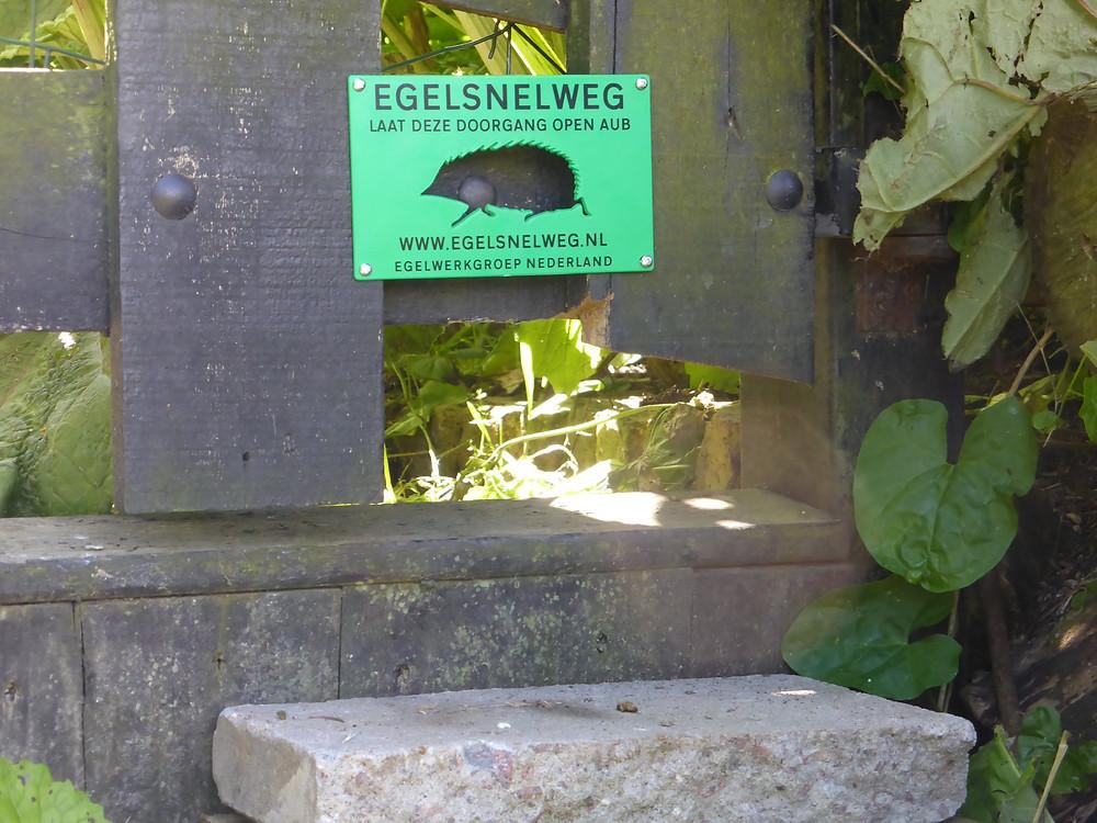 Egelsnelweg in de tuin van een egelliefhebber (foto: Anke van Westerlaak