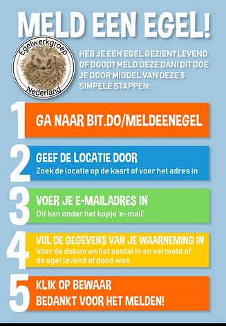Poster-meld-een-egel.png