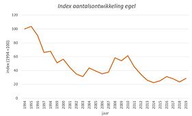 Index aantalsontwikkeling egel 1994-2019