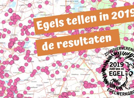 Egels tellen in 2019: de resultaten
