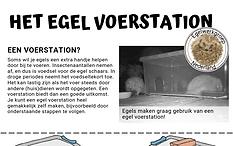 Egel voerstation DIY