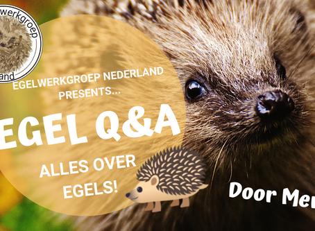 Egel Q&A!