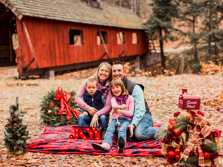 Holiday Mini-Sessions
