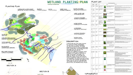 Erin Wetland Design
