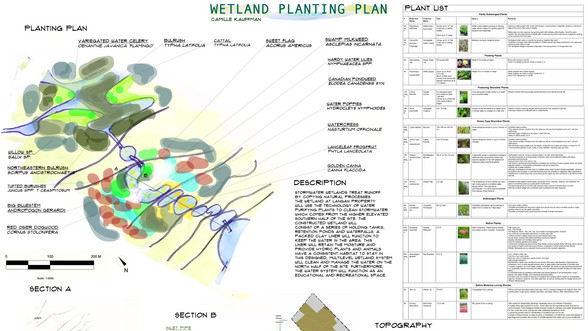 Erin Wetland Design