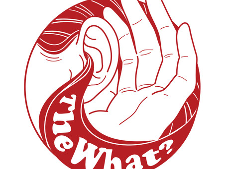 """The What?"" Desde Pensilvania y al servicio del Power Pop"