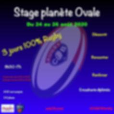 Stage planète ovale.001.jpeg