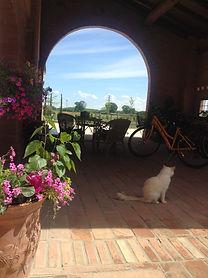 Agriturismo Olianina, Villa Poma, Agriturismo Mantova, pernottamento e prima colazione Mantova