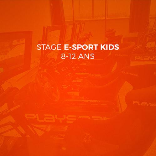 Stage E-Sport Kids - 17 février 2021