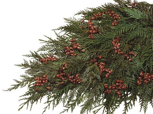 Coned Cedar