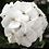 Thumbnail: White Geranium - FILLER!
