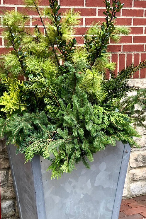 Third Street Planter Boxes - Greenery Supporter $50